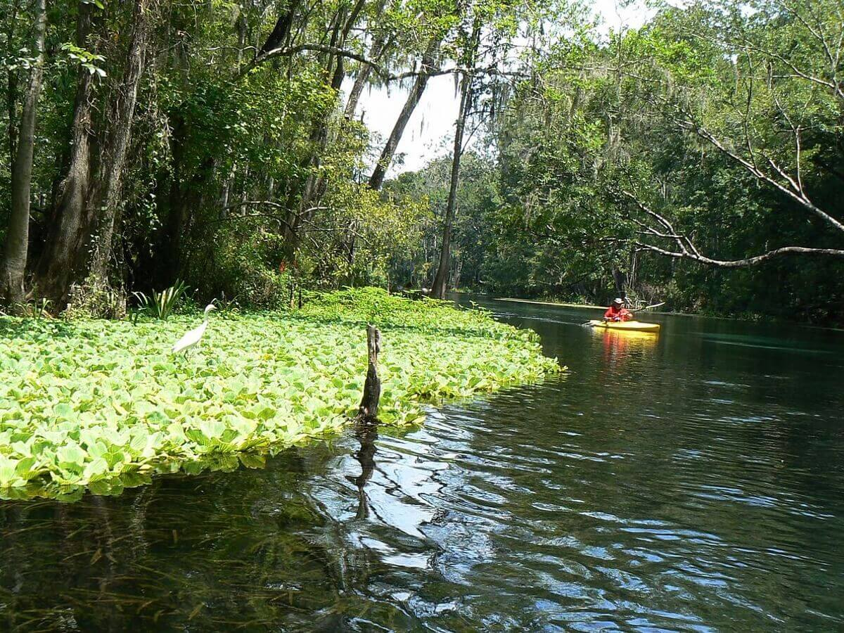 kayaking on Ichetucknee River, Florida