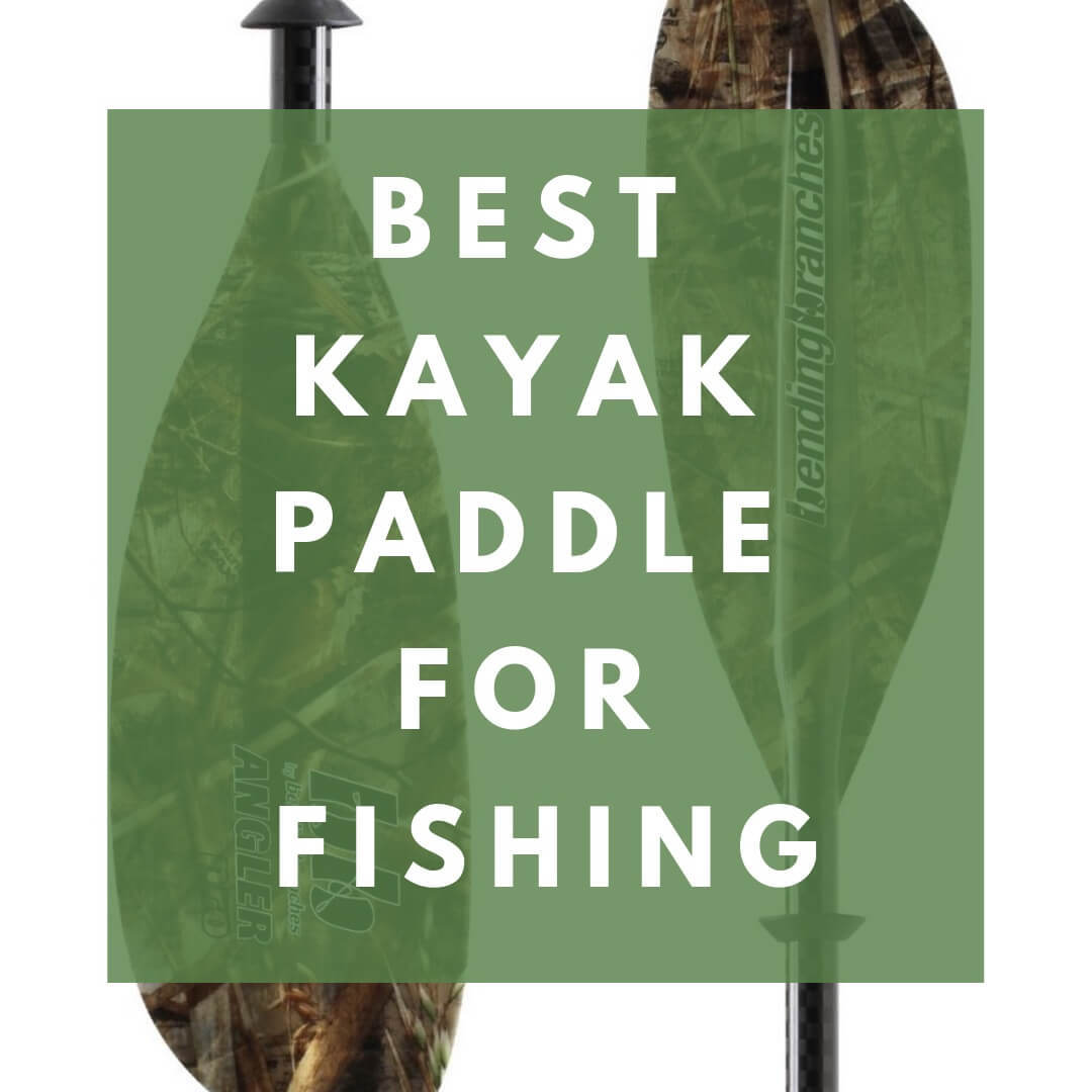 Best Kayak Paddle For Fishing In Depth Reviews